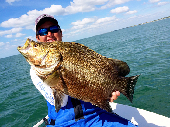 Nov 2014 monthly swfl fishing report grande adventures for Boca grande fishing report